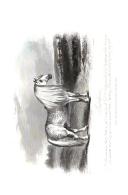 Strona 272