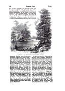 Strona 568