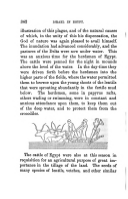 Strona 342
