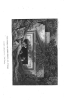 Strona 334