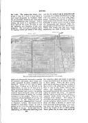 Strona 491