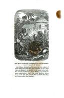 Strona 56