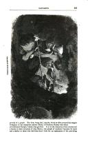 Strona 507