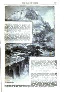 Strona 313