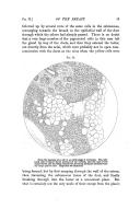 Strona 43