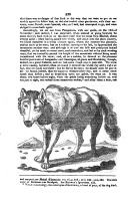 Strona 230