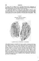 Strona 358