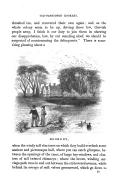 Strona 13