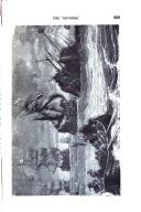 Strona 229