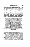 Strona 243