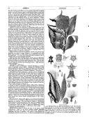 Strona 319