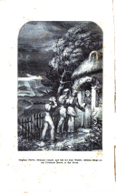 Strona 306