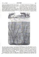 Strona 531