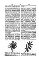 Strona 395