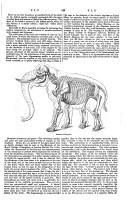 Strona 349