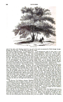 Strona 960