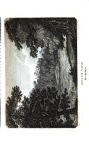 Strona 552