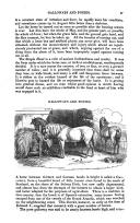 Strona 57