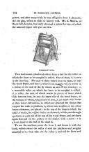 Strona 324