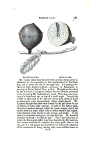 Strona 423